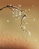 Pittura orientale di stile, fiore della prugna illustrazione vettoriale