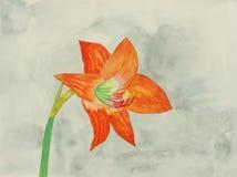 Pittura originale di un giglio rosso, un'arte del bambino Fotografia Stock Libera da Diritti