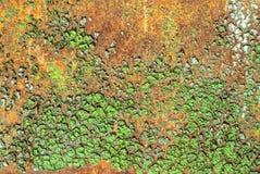 Pittura scheggiata sul fondo della superficie del ferro Immagine Stock
