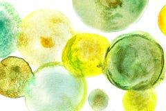 Pittura verde dell'acquerello nella forma dei cerchi fotografie stock