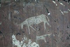 Pitture della roccia Fotografia Stock