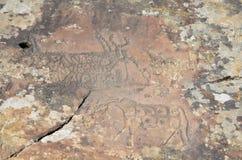 Pitture della roccia del toro fotografie stock libere da diritti