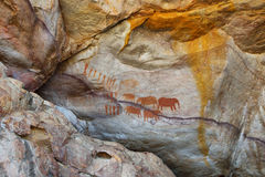 Pitture di caverna del boscimano in Cederberg Fotografie Stock