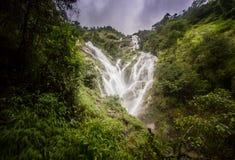 Pitugro WaterfallPetro Lo Unione Sovietica o cascata del cuore, il più alta cascata in Tailandia, situata nel santuario di fauna  Fotografia Stock Libera da Diritti
