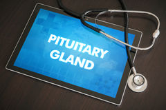 Pituitary gland (endocrine disease related) diagnosis medical co Royalty Free Stock Photo