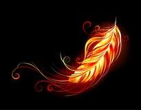 Piuma ardente sulla piuma nera del fuoco del fondo illustrazione di stock