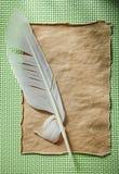 Piuma di carta d'annata sulla vista superiore del fondo verde Immagine Stock