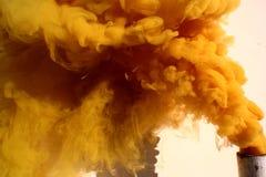 Piuma gialla Fotografia Stock