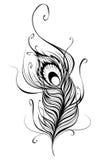 Piuma stilizzata del pavone Fotografia Stock Libera da Diritti