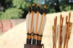 Piume colorate per le frecce in un fremito Immagine Stock