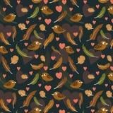Piume e modello degli uccelli Immagini Stock Libere da Diritti