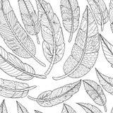 Piume etniche senza cuciture Modello tribale dell'annata delle piume Illustrazione disegnata a mano di scarabocchi illustrazione vettoriale