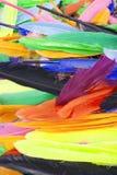 Piume luminose del pappagallo Bella foto vibrante colorata della piuma di uccello come fondo Reticolo variopinto della piuma fotografia stock