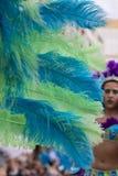 Piume variopinte del vestito di carnevale Fotografia Stock Libera da Diritti