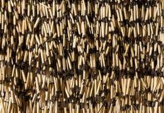 Piupiu Skirt Stock Photo