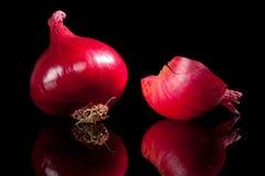 Piurple onion on black background. royalty free stock photography