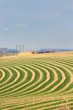 Pivô Center campo de exploração agrícola irrigado Fotos de Stock