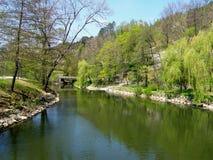 Pivka河在公园Postojnska Jama,斯洛文尼亚 免版税图库摄影