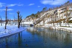 Pivka-Fluss im Winter, Slowenien stockfotografie