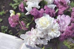 Pivoine blanche et spirea rose avec un livre ouvert Images stock