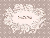 pivoines illustration stock