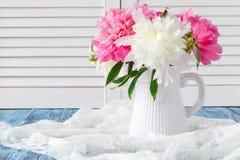 Pivoines dans le vase sur la lumière de matin Photo libre de droits