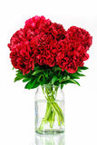 Pivoines dans un vase en verre avec de l'eau Image stock