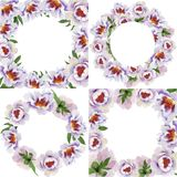 Pivoines doucement roses Fleur botanique florale Place d'ornement de frontière de vue illustration de vecteur