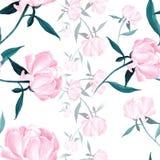 Pivoines - fleurs et feuilles Composition décorative sur un fond d'aquarelle Motifs floraux Configuration sans joint Image libre de droits