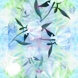 Pivoines - fleurs et feuilles Composition décorative sur un fond d'aquarelle Motifs floraux Configuration sans joint Photo libre de droits