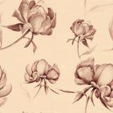 Pivoines - fleurs et feuilles Composition décorative sur un fond d'aquarelle Motifs floraux Configuration sans joint Employez le  Photos stock