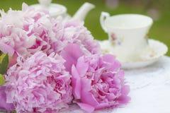 Pivoines roses image libre de droits