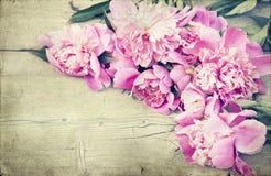 Pivoines roses sur le fond en bois - photo de vintage Image libre de droits