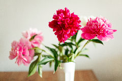pivoines Wildflowers dans un verre Photos stock