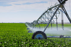 pivot d'irrigation Photo stock
