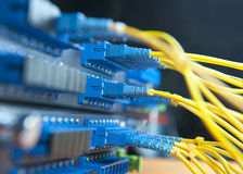 Pivot de réseau Photo libre de droits