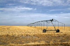 Pivot Irrigation Stock Image