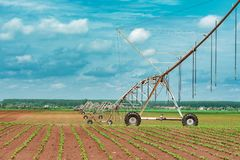 Pivot irrigation system in cultivated soybean and corn field. Agricultural equipment for watering crops stock images