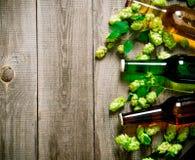 Piwa i zieleni chmiel głębii pola płycizny stół drewniany Obrazy Royalty Free