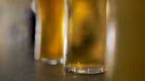 Piwa Na barze zbiory wideo