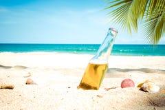 Piwna butelka na piaskowatej plaży z drzewkiem palmowym Fotografia Royalty Free