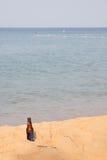 Piwna butelka na plaży Obraz Royalty Free