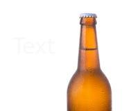 Piwna butelka odizolowywająca na bielu Zdjęcie Stock