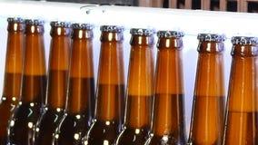 Piwna produkci roślina Linia pełne butelki gotowe dla pakować Przemysłowa linia dla rozlewniczego piwa Piwne butelki póżniej zdjęcie wideo