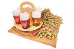 Piwna skrzynka z piwnymi szkłami obraz royalty free