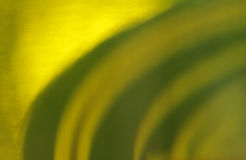 Piwna tekstura Obrazy Stock