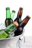 Piwne butelki w Lodowym Buclet zbliżeniu Zdjęcie Royalty Free