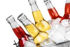 Piwne butelki w lodzie odizolowywającym na białym tle Fotografia Stock