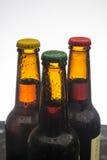 piwne tło butelki barwią delikatna pomarańcze fotografującego pracownianego kolor żółty Zdjęcia Stock