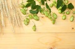 Piwnego piwowarstwa składników chmielu rożki i pszeniczni ucho na lekkim drewnianym stole Piwny browaru pojęcie tła piwo zawiera  Obrazy Stock